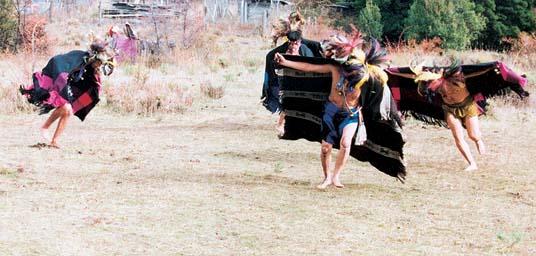 Danza ceremonial mapuche: choique purrun. Foto: F. Hermosilla